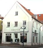 """1989: Der erste """"CACTUS"""""""